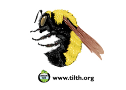 OR Tilth Pollinator Sticker-THUMB